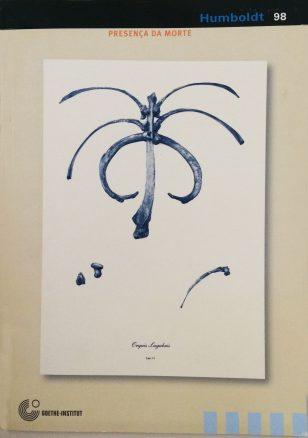 IMG_1899 copia